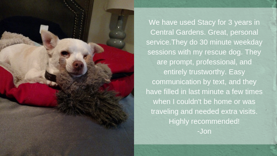 We have used Stacy for 3 years in Central Gardens. Great, personal service. They do 30 minute weekday sessions with my rescue dog. They are prompt, professional, and entirely trustworthy. Easy communication by text, and they have filled in last minute a few times when I couldn't be home or was traveling and needed extra visits. Highly recommended! -Jon