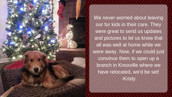 We never worried about leaving our fur kids in their care. They were great to send us updates and pictures to let us know that all was well at home while we were away. Now, if we could just convince them to open up a branch in Knoxville where we have relocated, we'd be set! -Kristy